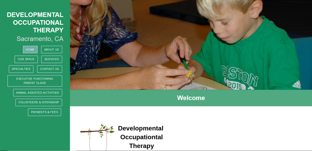 Developmental Occupational Therapy